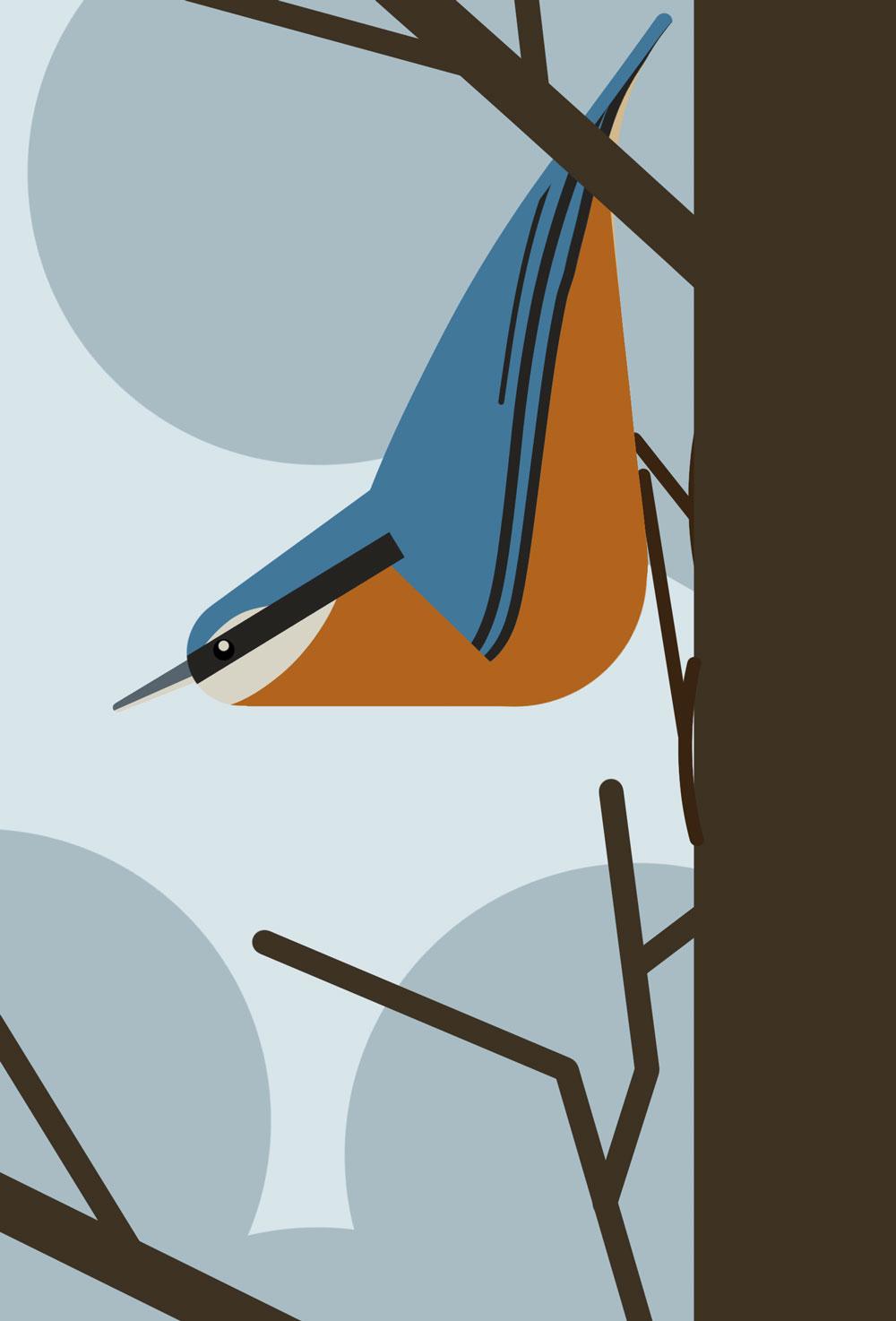 Leicht abstrakte, grafische Darstellung eines Kleibers