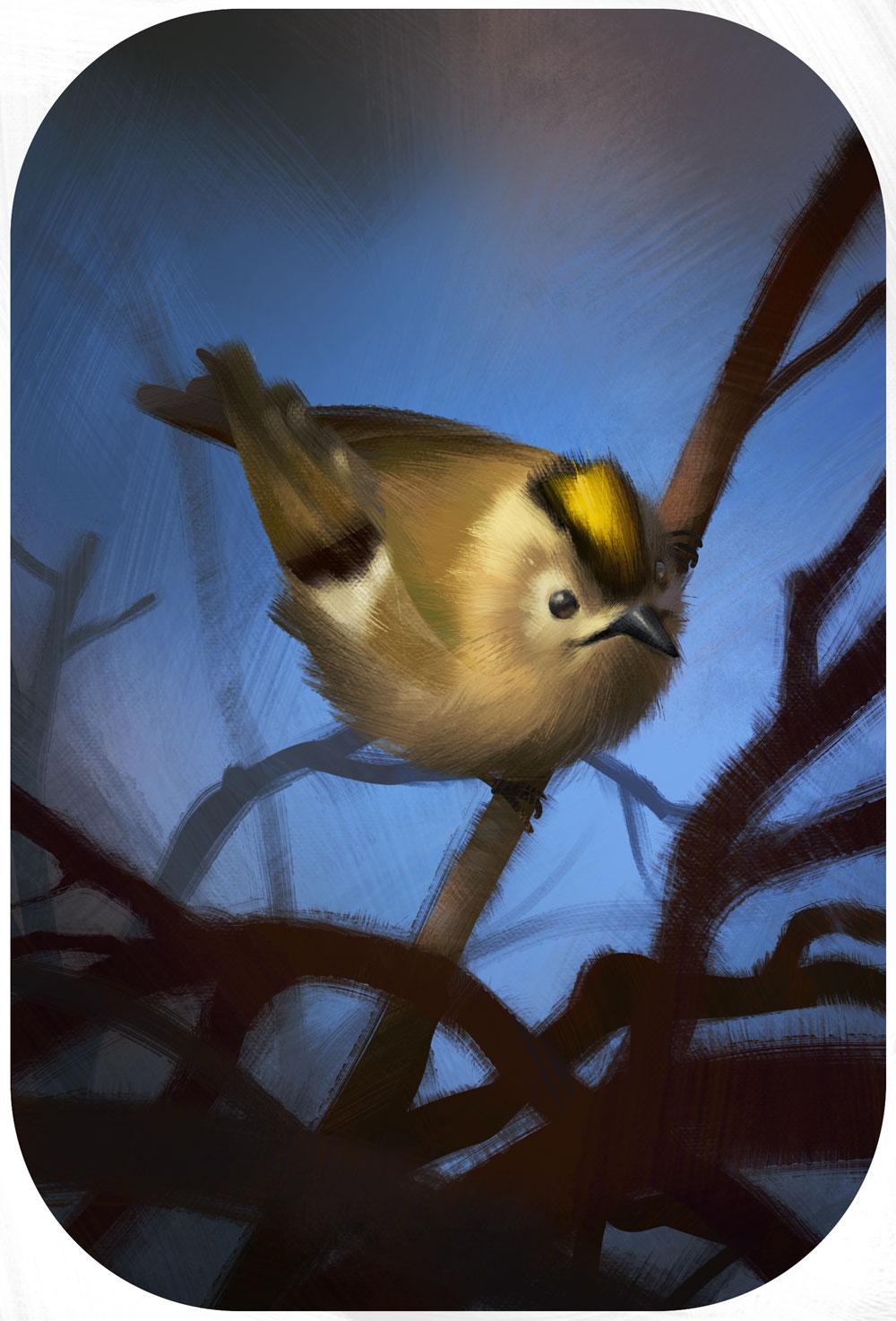 Leicht abstrakte Darstellung eines Wintergoldhaehnchen