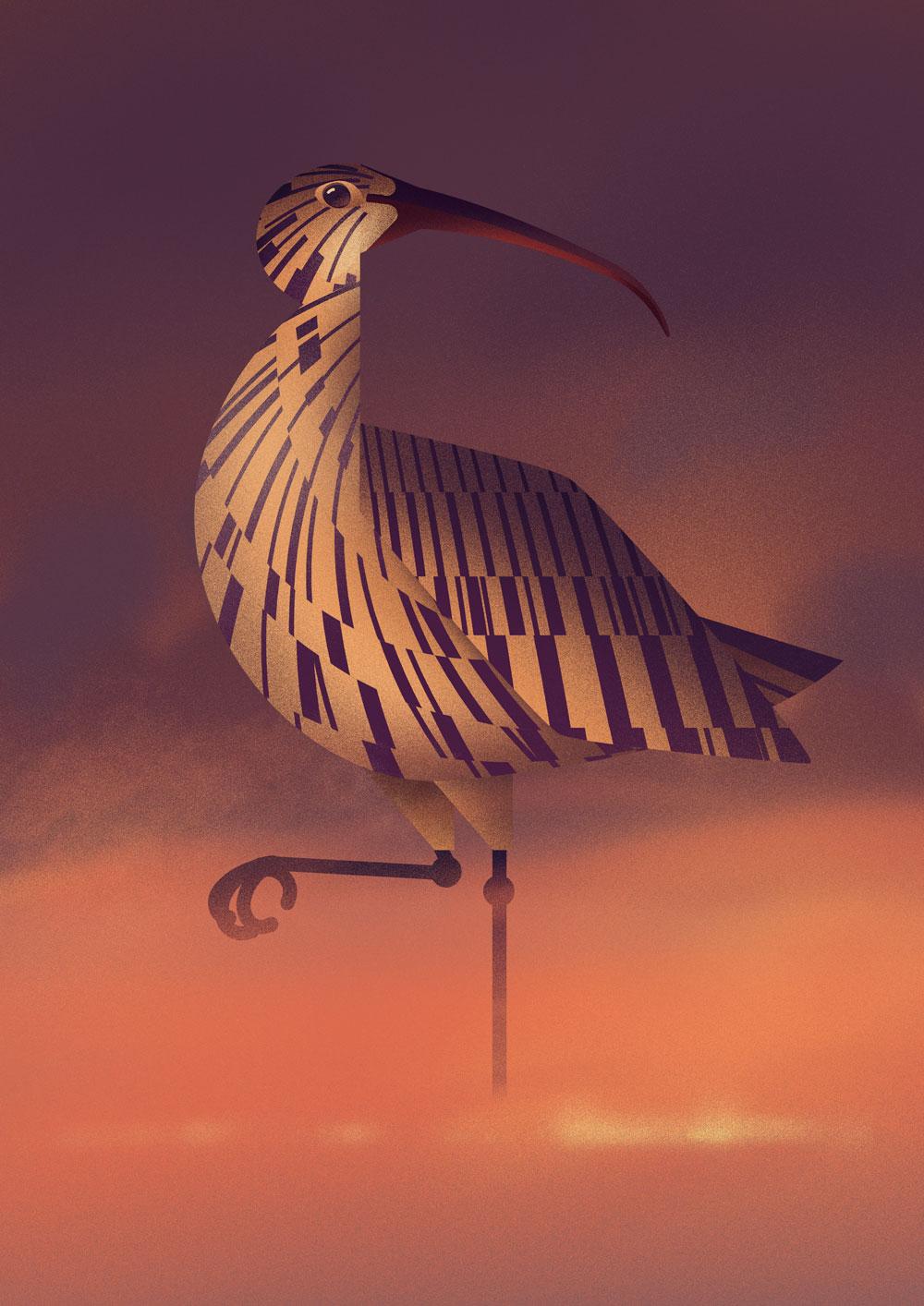 Stark abstrahierte, grafische Darstellung eines Großen Brachvogel